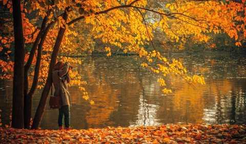 Žena, stromy